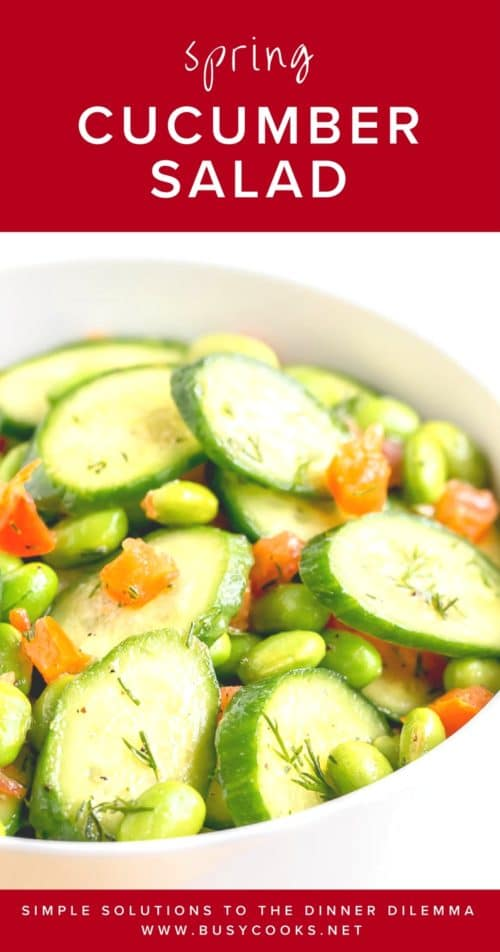 Light and fresh, this spring cucumber salad is a perfect side for any dinner. #quicksalad #saladrecipe #busycooks