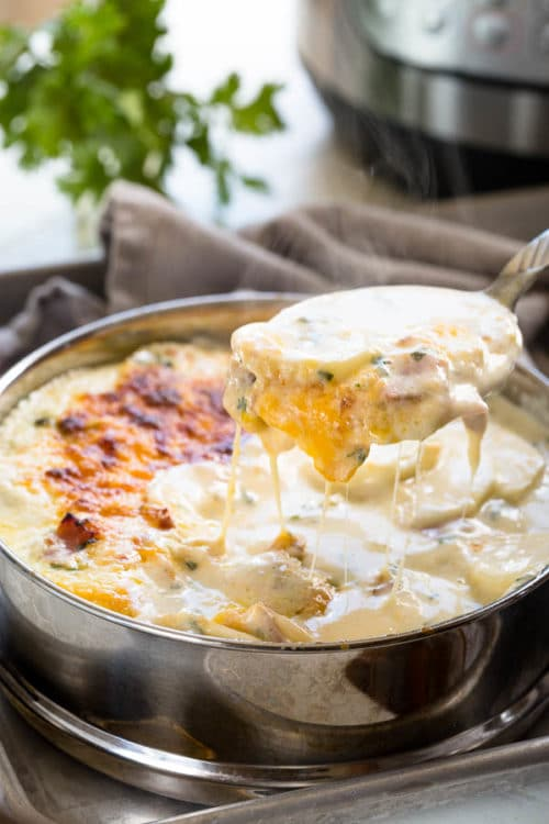 Rich, creamy and irresistibly cheesy, these Instant Pot scalloped potatoes are an instant comfort dish. It can be served as a side dish, or a main, and it'll sure be your family favorite!!!!  #sidedish #InstantPotrecipes #Instantpotpotatoes #scallopedpotatoes #comfortfood #busycooks