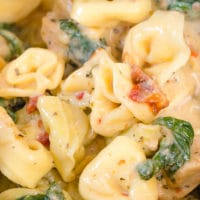 Flavored with sweet-tart sun-dried tomatoes, this Instant Pot creamy chicken tortellini takes minutes to make and is bursting with flavor. Concentrated flavors of oil-packed sun-dried tomatoes along with cheese give this weeknight meal that addicting taste of comfort food. Easy, quick and irresistibly delicious weeknight pasta for the whole family to enjoy! #busycooks #InstantPotrecipes #weeknightmeals #InstantPotPasta