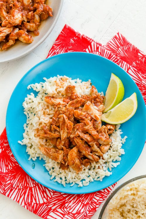 The EASIEST salsa chicken with brown rice, cooked with FROZEN chicken and in an Instant Pot all at the same time! Easy, healthy and basically hands-free!